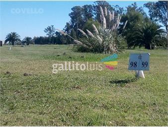https://www.gallito.com.uy/terreno-real-de-san-carlos-playa-colonia-del-sacramento-inmuebles-19639713