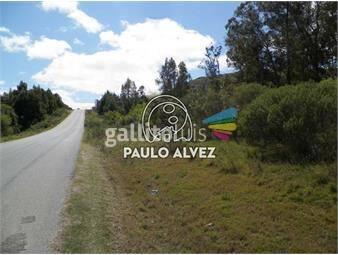 https://www.gallito.com.uy/terrenos-venta-piriapolis-te1039-inmuebles-19715550