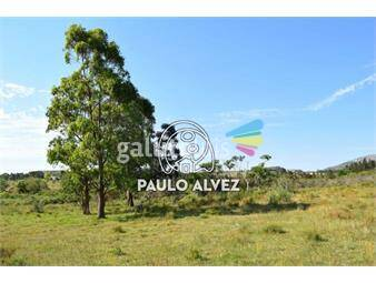 https://www.gallito.com.uy/chacras-venta-playa-grande-ch007-inmuebles-19715748
