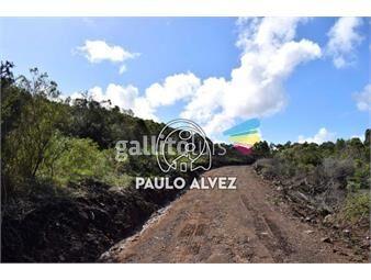 https://www.gallito.com.uy/terrenos-venta-playa-verde-te1188-inmuebles-19715876