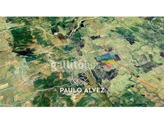https://www.gallito.com.uy/chacras-venta-maldonado-ch042-inmuebles-19716072