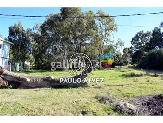 https://www.gallito.com.uy/terrenos-venta-playa-hermosa-te1031-inmuebles-19716095