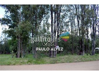 https://www.gallito.com.uy/terrenos-venta-playa-verde-te1012-inmuebles-19716280