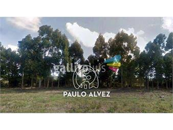 https://www.gallito.com.uy/chacras-venta-barra-de-portezuelo-ch3013-inmuebles-19716307