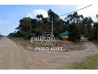https://www.gallito.com.uy/terrenos-venta-punta-colorada-te985-inmuebles-19716351