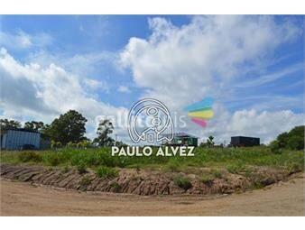 https://www.gallito.com.uy/terrenos-venta-punta-colorada-te716-inmuebles-19716537