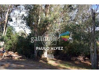 https://www.gallito.com.uy/terrenos-venta-playa-verde-te1233-inmuebles-19716574