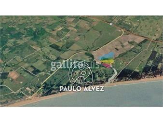 https://www.gallito.com.uy/terrenos-venta-barra-de-portezuelo-te390-inmuebles-19716658