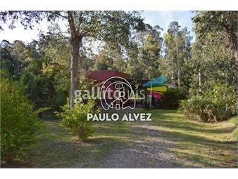 https://www.gallito.com.uy/casas-alquiler-temporal-bella-vista-2192-inmuebles-19716702
