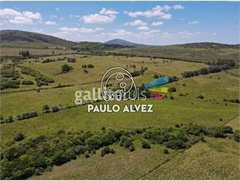 https://www.gallito.com.uy/chacras-venta-punta-negra-ch3028-inmuebles-19716778