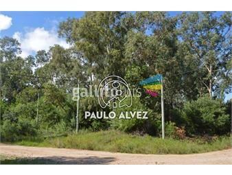 https://www.gallito.com.uy/terrenos-venta-punta-colorada-te811-inmuebles-19716935