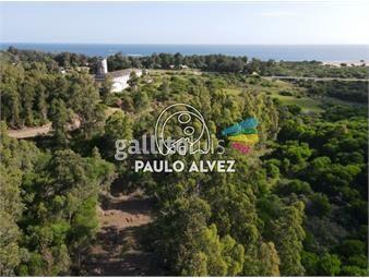 https://www.gallito.com.uy/terrenos-venta-playa-verde-te1261-inmuebles-19716958