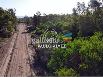 https://www.gallito.com.uy/terrenos-venta-playa-verde-te1263-inmuebles-19716963