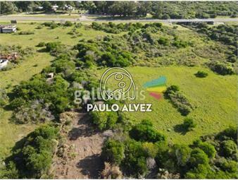 https://www.gallito.com.uy/terrenos-venta-playa-verde-te1264-inmuebles-19716964