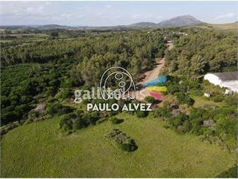 https://www.gallito.com.uy/terrenos-venta-playa-verde-te1269-inmuebles-19716969