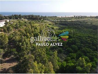 https://www.gallito.com.uy/terrenos-venta-playa-verde-te1272-inmuebles-19716971