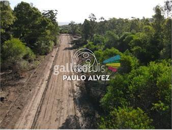 https://www.gallito.com.uy/terrenos-venta-playa-verde-te1271-inmuebles-19716972
