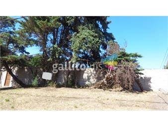 https://www.gallito.com.uy/venta-terreno-con-inmejorable-ubicacion-a-dos-de-la-pla-inmuebles-18805220
