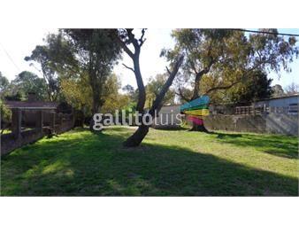 https://www.gallito.com.uy/precioso-terreno-pronto-para-construir-inmuebles-16979764