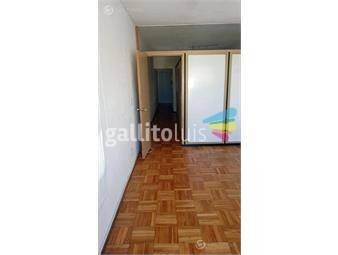 https://www.gallito.com.uy/apartamento-cordon-mono-de-40m²-division-gc-aprox-2900-inmuebles-19742362