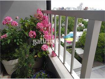 https://www.gallito.com.uy/alquiler-monoambiente-pcarretas-amueblado-inmuebles-19439050
