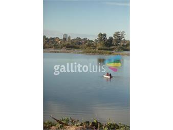 https://www.gallito.com.uy/lagos-piscina-vig-club-house-precio-lanz-15-menos-inmuebles-19340628