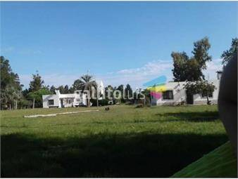 https://www.gallito.com.uy/chacra-en-soca-ruta-8-km-61-3-hectareas-inmuebles-19708272