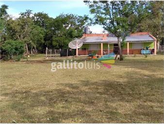 https://www.gallito.com.uy/venta-campo-ganadero-artigas-inmuebles-19567297