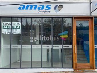 https://www.gallito.com.uy/casatroja-alquiler-local-punta-carretas-inmuebles-19201091
