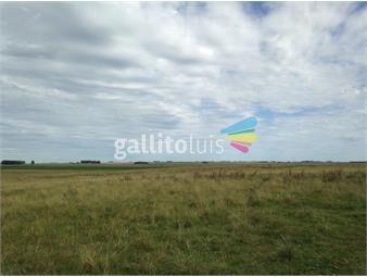 https://www.gallito.com.uy/campo-ganadero-agricola-en-durazno-ref-3787-inmuebles-19015521