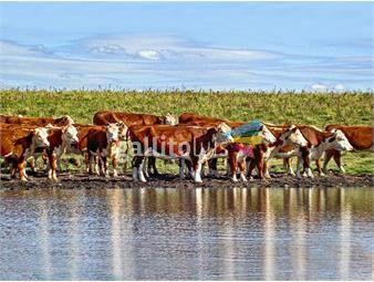 https://www.gallito.com.uy/campo-agricola-ganadero-en-durazno-ref-5809-inmuebles-18499862