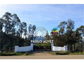 https://www.gallito.com.uy/chacras-venta-piriapolis-ch089-inmuebles-19939951