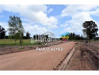 https://www.gallito.com.uy/terrenos-venta-piriapolis-te1222-inmuebles-19939958