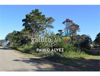https://www.gallito.com.uy/terrenos-venta-punta-colorada-te254-inmuebles-19940032