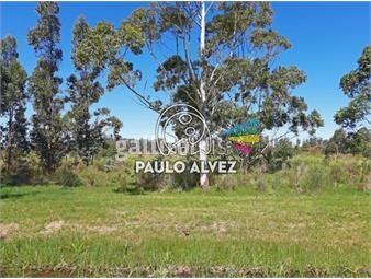 https://www.gallito.com.uy/terrenos-venta-barra-de-portezuelo-te207-inmuebles-19940276