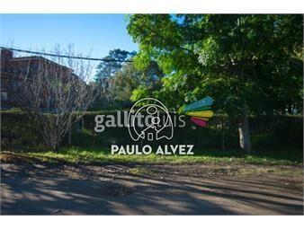 https://www.gallito.com.uy/terrenos-venta-piriapolis-te1278-inmuebles-19940451