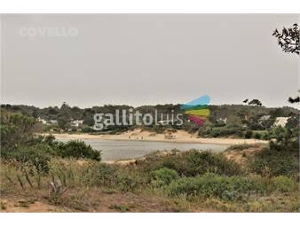 https://www.gallito.com.uy/terreno-playa-brava-inmuebles-19281260
