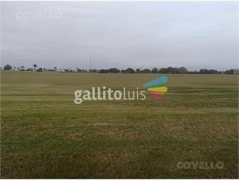 https://www.gallito.com.uy/terreno-las-garzas-inmuebles-19281709