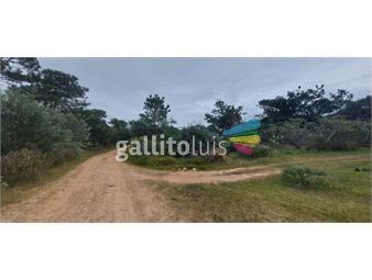 https://www.gallito.com.uy/terreno-a-la-venta-en-oceania-a-250-m-de-la-costa-inmuebles-19980259