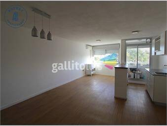 https://www.gallito.com.uy/apartamento-en-alquiler-inmuebles-19957532