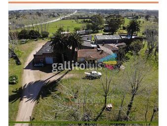 https://www.gallito.com.uy/venta-de-bodega-con-casas-en-camino-mendoza-montevideo-inmuebles-19979818