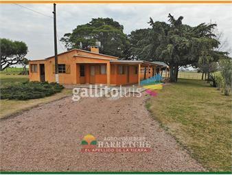 https://www.gallito.com.uy/venta-de-chacra-9has3-dormitorios-en-san-antonio-canelo-inmuebles-19083672