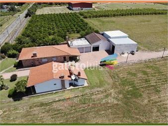 https://www.gallito.com.uy/venta-de-chacra-2-has-6-dormitorios-en-paso-de-la-arena-inmuebles-19033174