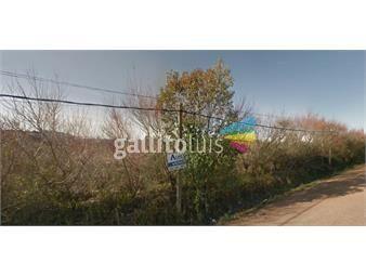 https://www.gallito.com.uy/chacra-en-venta-zona-logistica-e-industrial-de-montevideo-inmuebles-16979628