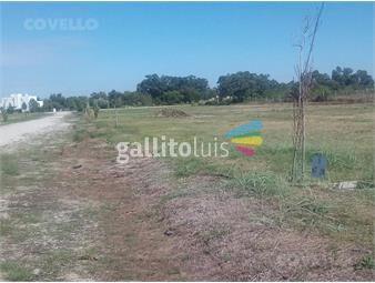 https://www.gallito.com.uy/terreno-en-colonia-del-sacramento-unico-barrio-club-house-inmuebles-19587817