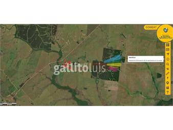 https://www.gallito.com.uy/venta-campo-604-has-agricolas-ganaderas-treinta-y-tres-inmuebles-19864613