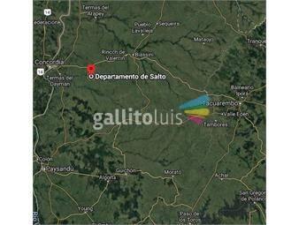 https://www.gallito.com.uy/campo-en-salto-ref-3758-inmuebles-19567296