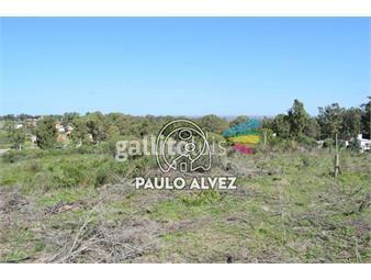 https://www.gallito.com.uy/terrenos-venta-playa-verde-te1194-inmuebles-20052281