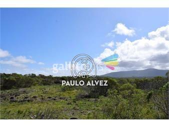 https://www.gallito.com.uy/terrenos-venta-playa-verde-te1186-inmuebles-20052282