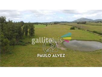https://www.gallito.com.uy/chacras-venta-pan-de-azucar-ch036-inmuebles-20052647